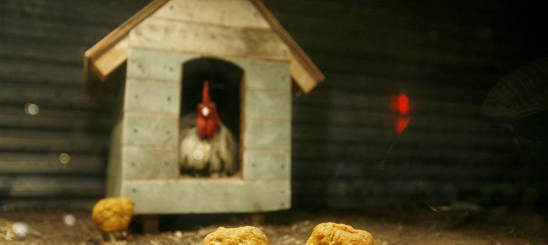 Foto: Dos 'nuggets' de pollo robóticos en una instalación de Bansky. (Reuters)