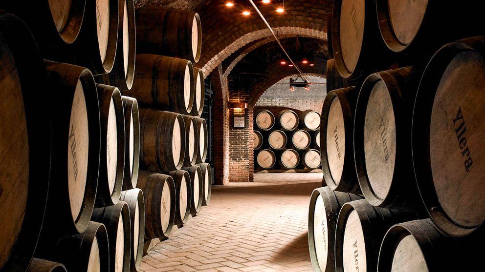 Yllera, mitología del vino