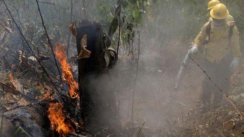 Los incendios del Amazonas no cesan: más de mil nuevos focos y Bolivia pide ayuda internacional