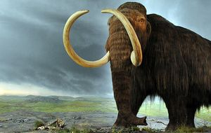 ¿Clonar mamuts? Ian Willmut apuesta por las células madre