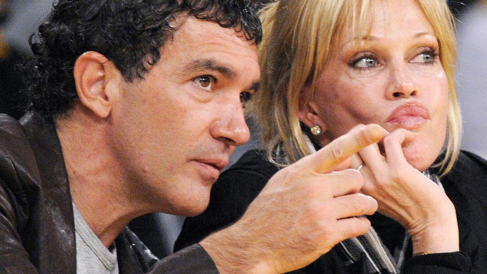 Antonio Banderas y Melanie Griffith luchan por la custodia de sus tres perros