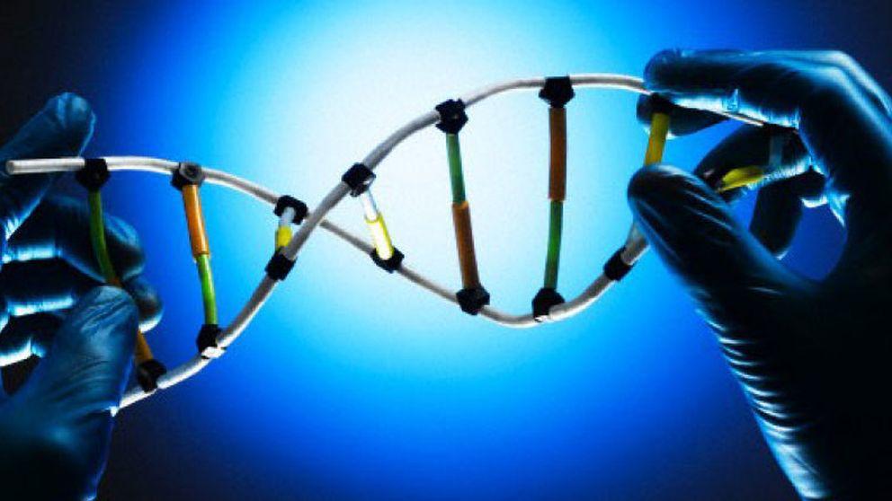 Las misteriosas raíces de la inteligencia: ¿hay un código genético para los genios?