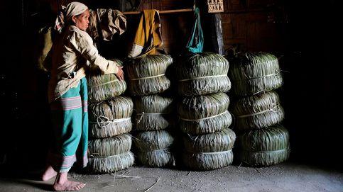Almacenando bolsas de arroz