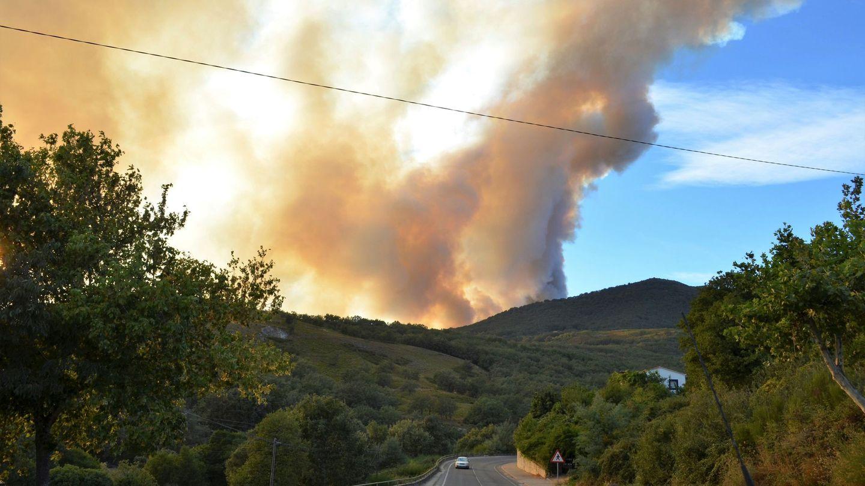Medios aéreos y terrestres trabajan en la extinción de un incendio forestal declarado en el Valle del Jerte (Cáceres). (EFE)