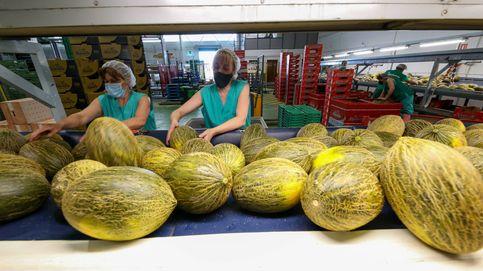 Pánico en el pueblo de los melones por un dato falso de covid-19: Esto nos arruina