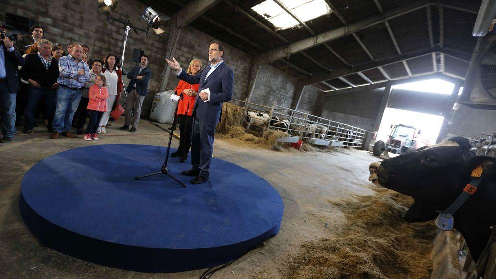 Foto: Mariano Rajoy durante un mitin en Gozón, Asturias, el 16 de junio. Foto: EFE