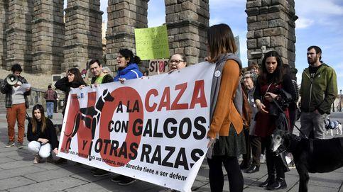 Manifestaciones en toda España en contra de la caza con galgos
