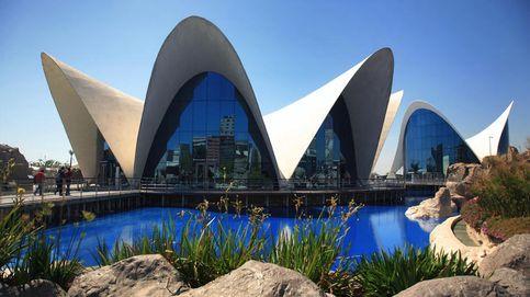 L'Oceanogràfic, un negocio que solo ve Aguas de Valencia