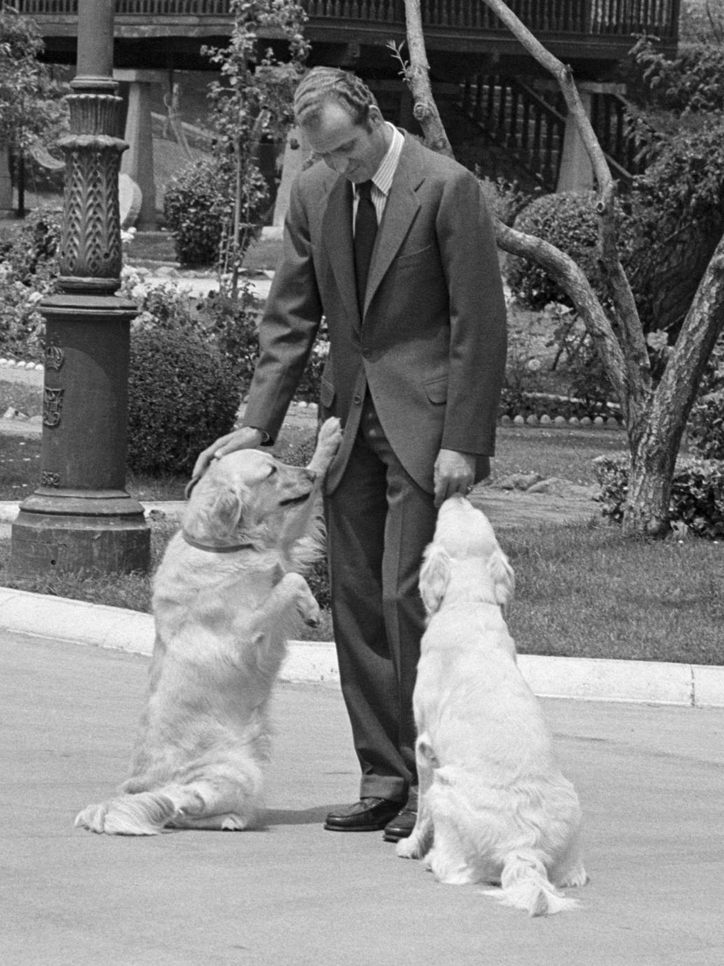 El rey Juan Carlos, con sus perros en una imagen de archivo. (Cordon Press)