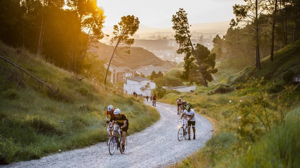 Foto: La Eroica, bicicletas entre viñas