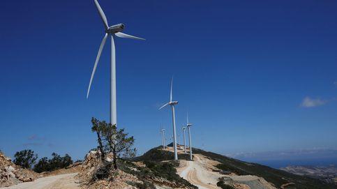 Blue Tree supera los 1.000 MW de renovables bajo gestión