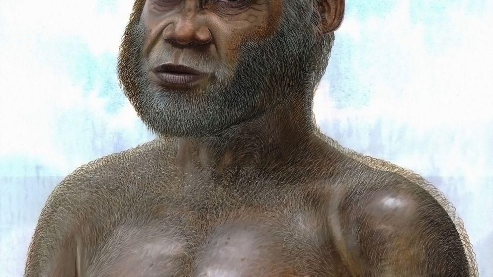 Un hueso olvidado durante 25 años apunta a una nueva especie humana