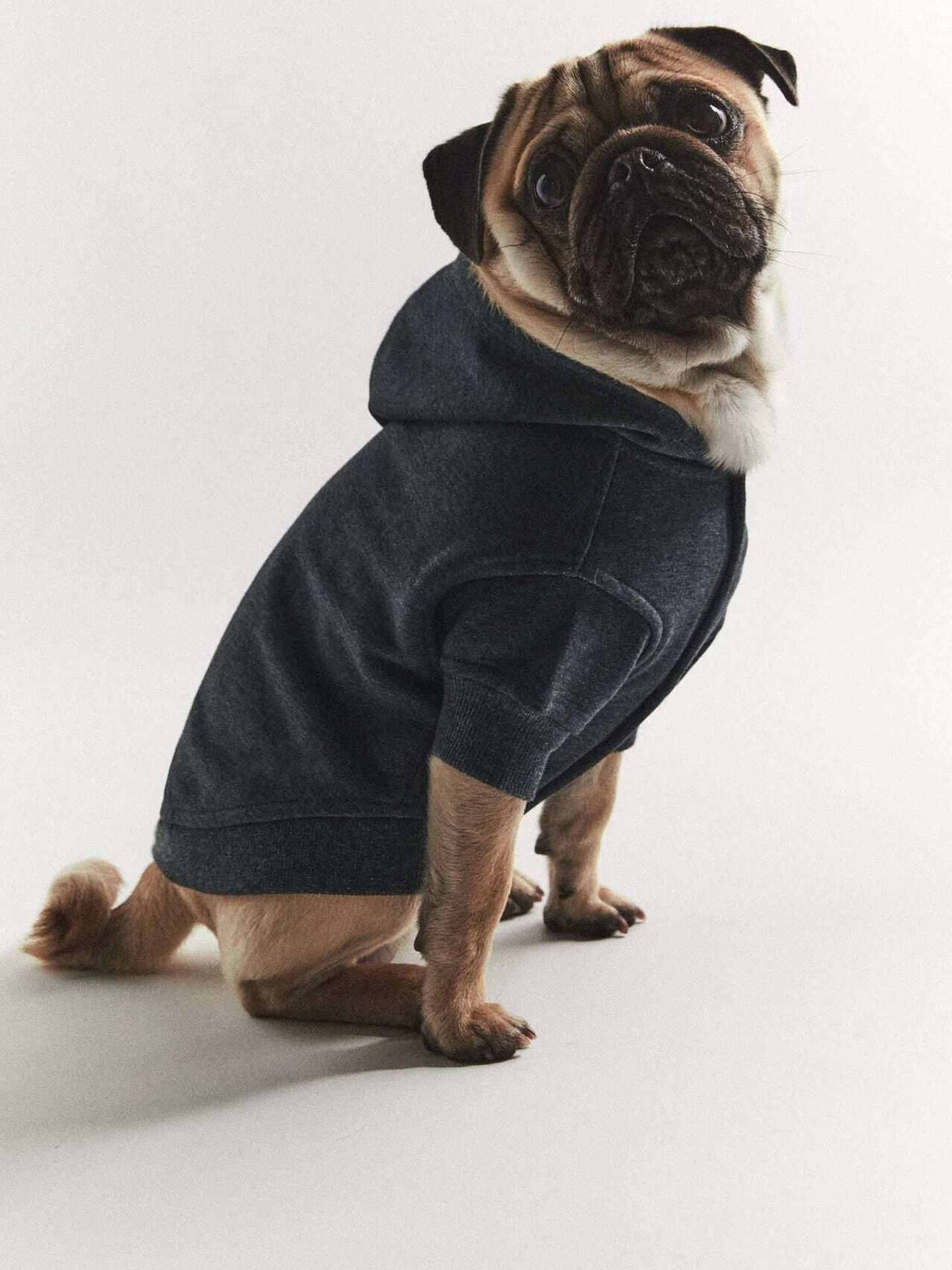 Una sudadera para tu perro de Zara. (Cortesía)