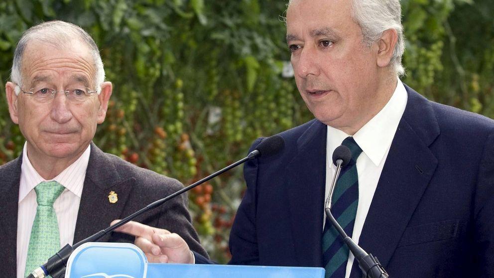 Otro problema para el PP: Amat, presidente en Almería, imputado