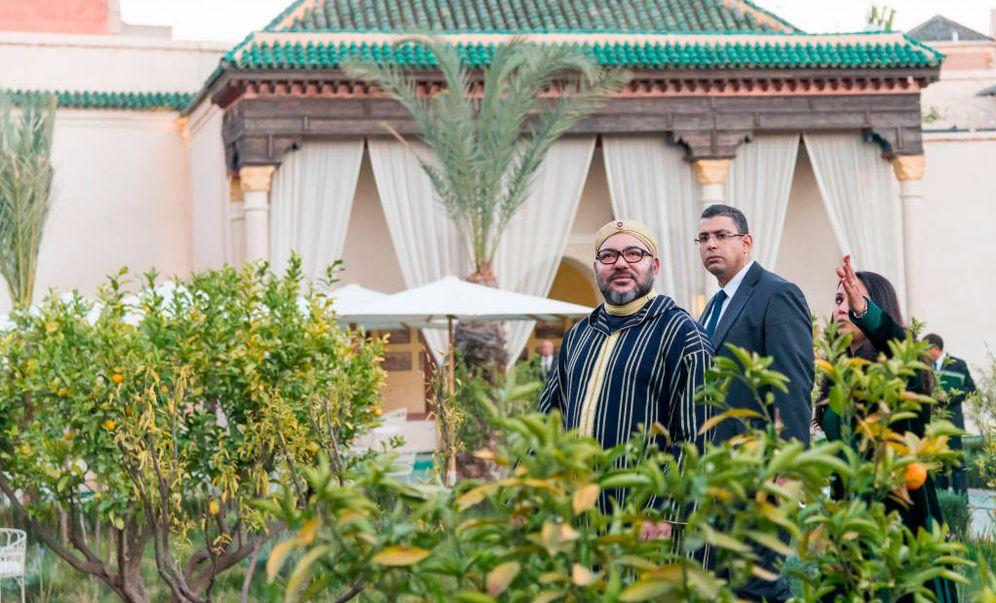 Foto: La variedad Nadorcott es propiedad de una empresa de la familia real marroquí.