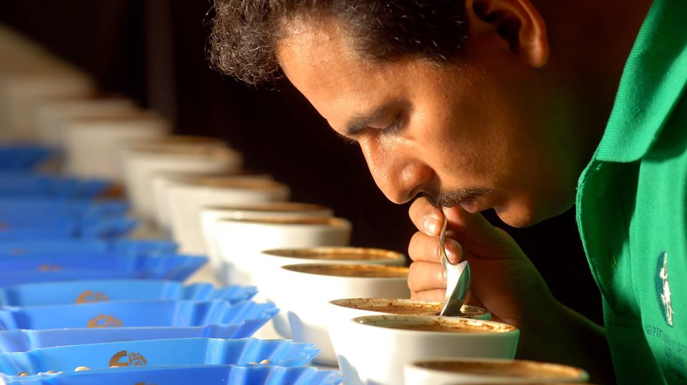 Foto: Se han encontrado estas substancias en 103 muestras distintas de café. (EFE)
