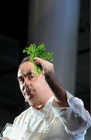 """Ferran Adrià: """"El Bulli pierde medio millón de euros al año"""""""