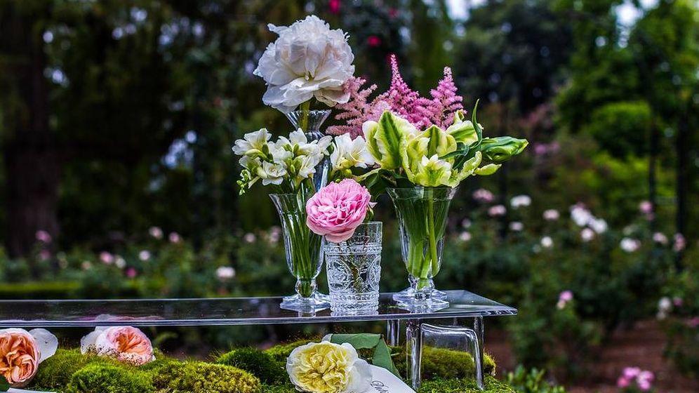 Foto: Jarrones de cristal para colocar flores y plantas por toda la casa