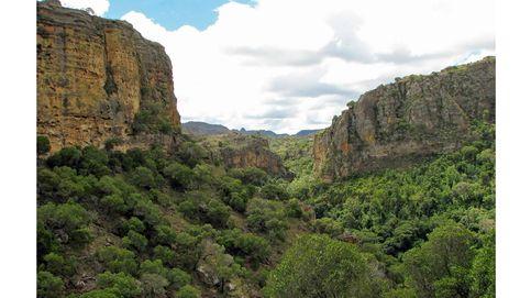Madagascar: un viaje inolvidable por la isla de Noé