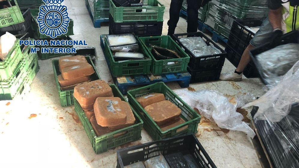 Foto: La policía nacional incauta más de media tonelada de cocaína escondida dentro de bloques de comida congelada