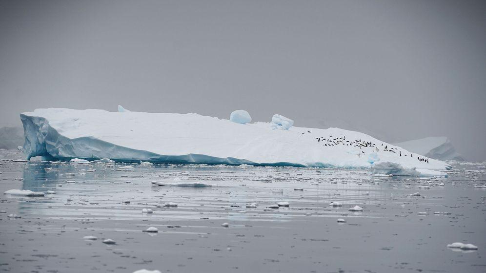 Foto: Un cementerio de hielo: el lugar al que irá a parar el iceberg más grande del mundo. (Reuters)