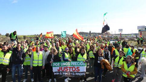 El campo colapsa Extremadura: 15 km de atasco y protestas de los conductores