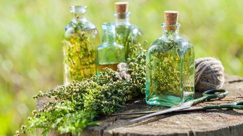 ¿Sientan bien los licores de hierbas al estómago?