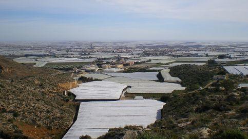 El tiempo en El Ejido: previsión meteorológica de hoy, domingo 17 de enero