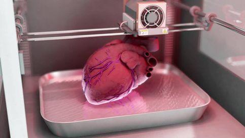 Nuevo avance en la fabricación de órganos humanos para trasplantes