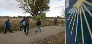 Post de Un camino, mil opciones: entre qué rutas elegir para hacer el Camino de Santiago