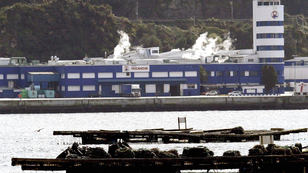 La banca quiere purgar Pescanova con el ricino aplicado en Abengoa e Isolux