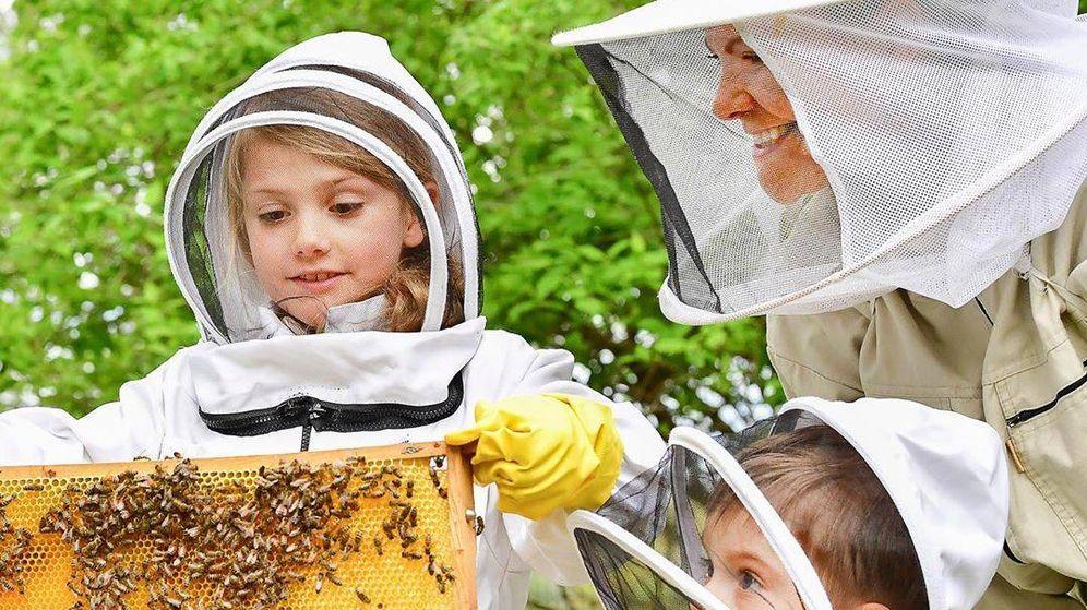 Foto: Victoria, Estelle y Oscar, apicultores por un día. (Jonas Ekströmer / Casa Real)
