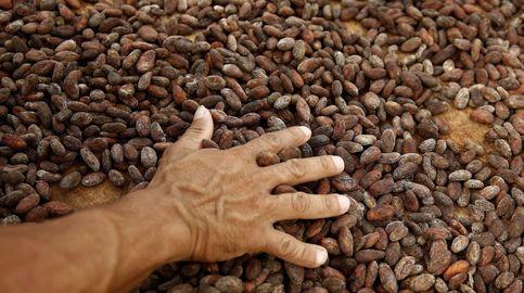 De las Perseidas al chocolate: cuando llovió cacao en Suiza en pleno 2020