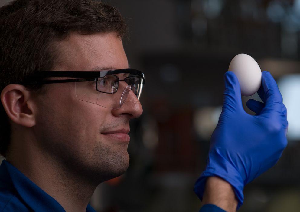 Foto: El profesor Greg Weiss sostiene un huevo. (Steve Zylius / UC Irvine)