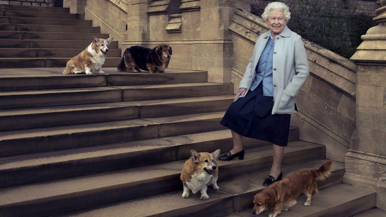 La reina, con algunos de sus corgis. (Buckingham Palace)