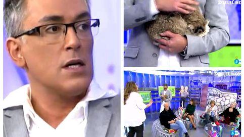 Kiko Hernández lleva a 'Sálvame' a su gato disecado: Se llama Pulgas