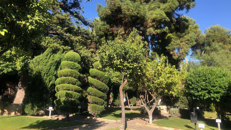 Jardines del Palacio de Medinaceli.