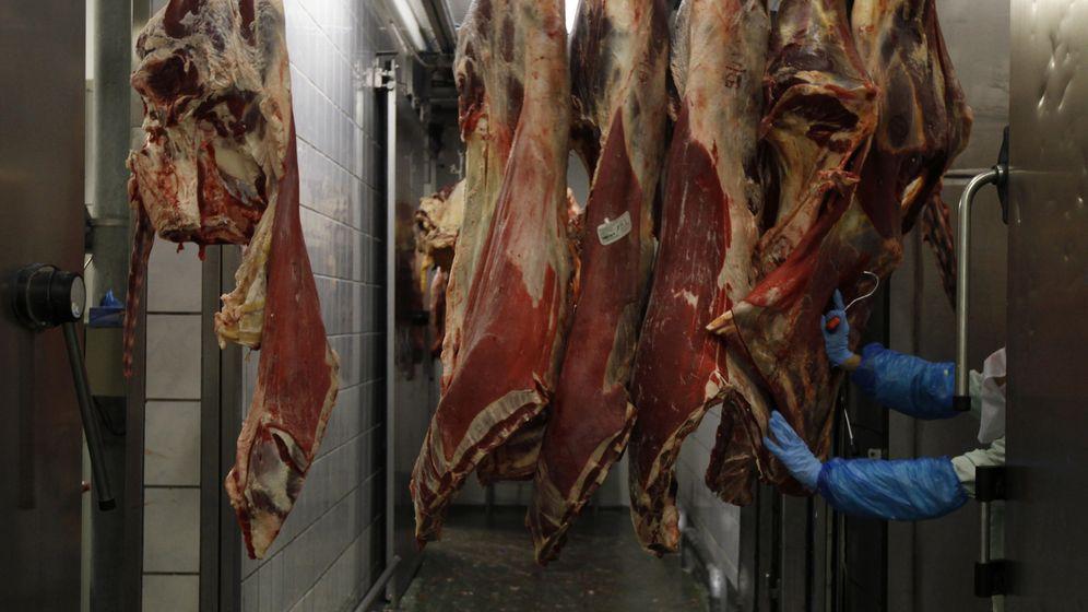 Foto: Imagen de archivo de un matadero de vacuno. (Reuters)