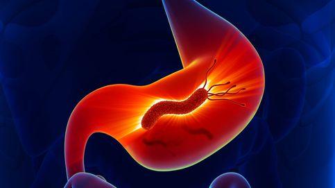Helicobacter pylori: por qué no siempre hay que matar a esta bacteria