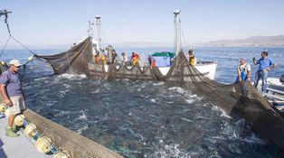 El Mediterráneo, una fábula sin fin