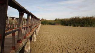 Íberos 1 – sequía 0: ¿la única solución es esperar la venida de la lluvia?