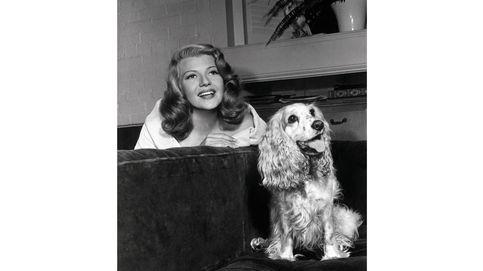 Parecidos razonables: las mascotas de los famosos