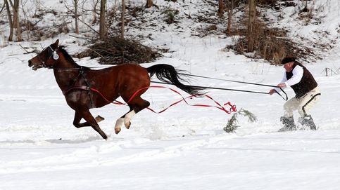 Carrera de caballos en Polonia