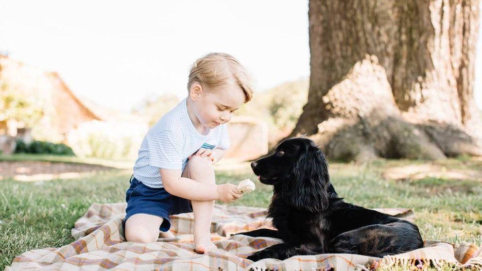 Las imágenes oficiales del tercer cumpleaños del príncipe George de Cambridge