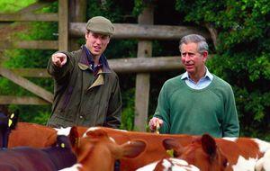 Polémica por el fin de semana de caza de los príncipes Guillermo y Enrique de Inglaterra en la finca La Garganta