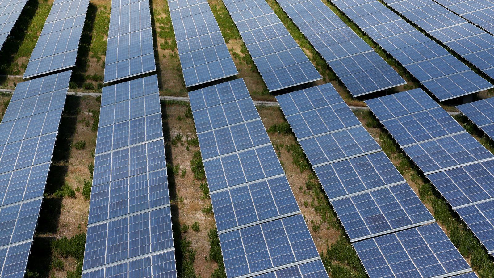 Foto: Foto de archivo de un parque solar. (Reuters)
