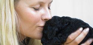 Post de La historia de cómo Mette-Marit recurrió a Instagram para encontrar a su perro