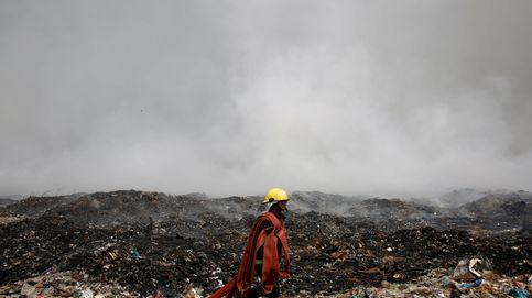 Incendio en el vertedero más grande de Birmania y cría de cerdo hormiguero: el día en fotos