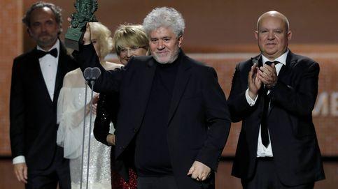 Premios Goya 2020, en directo | 'Dolor y gloria', Goya a la mejor película