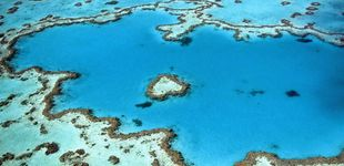 Post de La última idea para salvar la Gran Barrera de Coral: declararla